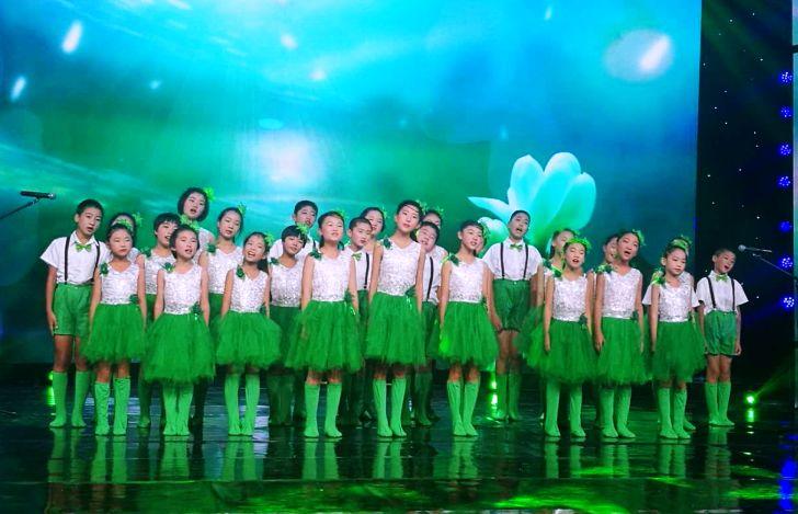 歌儿唱到北京去——农工党员王春燕的支教之歌